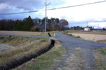 shinasakatoyonaga36