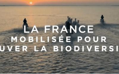 3ème stratégie nationale pour la biodiversité