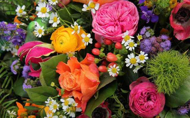 Image result for image of flowers