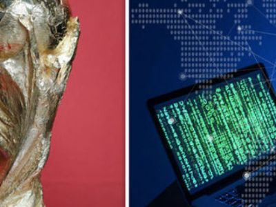 Το Μουντιάλ ξεκινά και οι χάκερ έπιασαν δουλειά