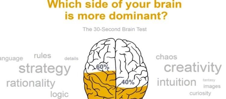 Η κυρίαρχη πλευρά του εγκεφάλου μας