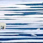 Βόλτα στον Αρκτικό Κύκλο
