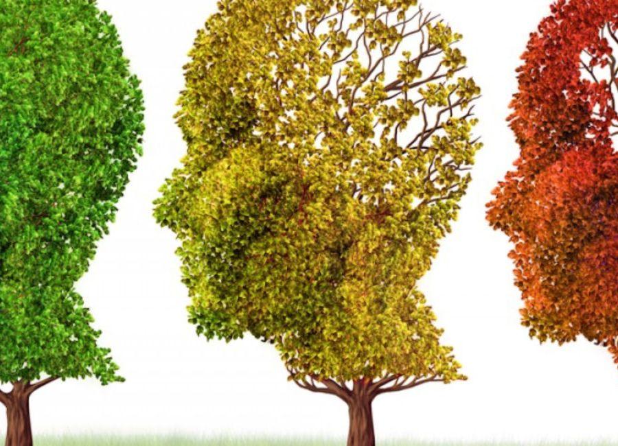 Τα 10 πρώιμα σημάδια του Αλτσχάϊμερ