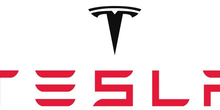 Πόσα έσκασε ο Μασκ για το όνομα της Tesla;