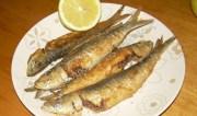 Ψάρια τηγανητά