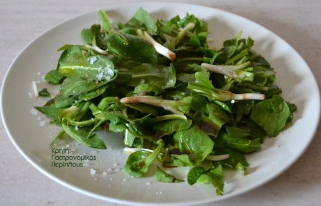 Σαλάτα γουλωτό ροδίκιο (ραδίκιο)