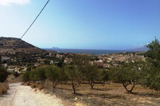 Hilltop plot in Pitsidia