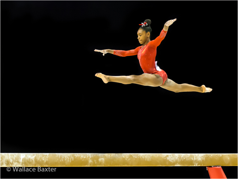 4_wallace baxter_Precision on The Beam_G_29-2