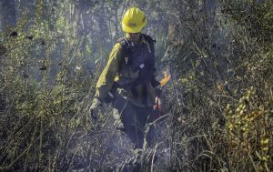 FWC biologist Kathleen Smith participates in a prescribed burn on CREW Management lands.