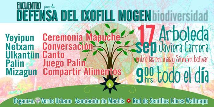 En Temuco se realizará encuentro por la defensa del Itxofill Mongen (Biodiversidad) este 17 de septiembre