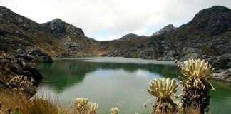 Minería en Páramo de Santurbán No Contó Con Estudios Sobre Impactos Socio-Ambientales