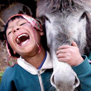 Un niño quechua de Perú, en 2009. Se denomina pueblos quechuas en el Perú a un conjunto grande y diverso de poblaciones andinas que tienen el propio quechua como lengua materno. Los crímenes perpetrados por el grupo terrorista Sendero Luminoso y los contraataques de las fuerzas armadas gubernamentales en los años ochenta afectaron mucho a estas comunidades campesinas. Cerca de tres cuartos de los 70.000 muertos estimados pertenecían a esta etnia. Además, las políticas de esterilización forzada durante el gobierno de Alberto Fujimori afectaron casi exclusivamente a mujeres quechuas y aimaras, siendo más de 200 000. PERCY RAMÍREZ MEDINA SURVIVAL INTERNATIONAL