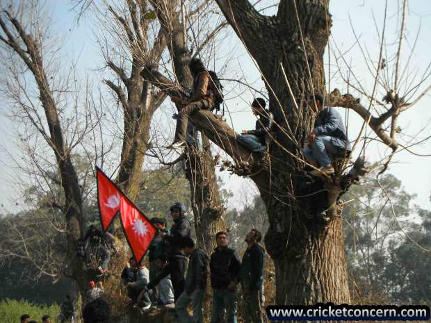 Supporters climb up to trees to watch Final Nep Vs Afg, Asian Cricket Council Twenty20 Cup