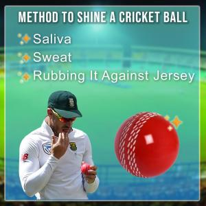 How To Shine A Cricket Ball