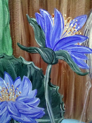 Cape Blue Water Lilies