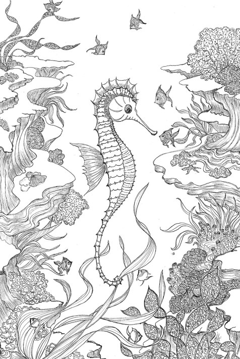 Philosophizing with a Seahorse