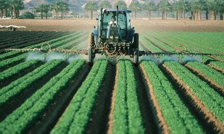 Diversas empresas desarrollan aplicaciones blockchain para sector agrícola