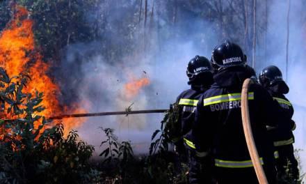 SurBTC recauda donaciones en bitcoins para ayudar a víctimas de incendios en Chile