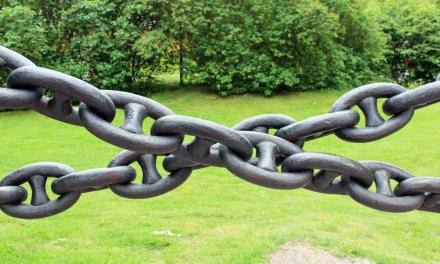 Bitfinex se adelanta a posible bifurcación de Bitcoin con la introducción de nuevos tokens
