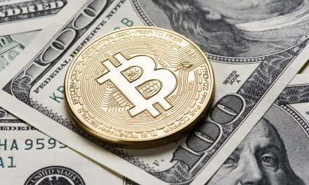 ¿Qué tanto es aceptada Bitcoin Cash a 7 semanas de su nacimiento?