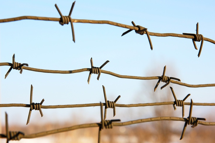 ICO en territorio hostil: panorama de su situación jurídica global