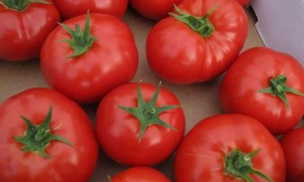Ex banquero y ex ejecutivo se unieron para registrar tomates en la blockchain