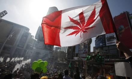 IBM propone monitorear la cadena de suministro de cannabis en Canadá mediante blockchain
