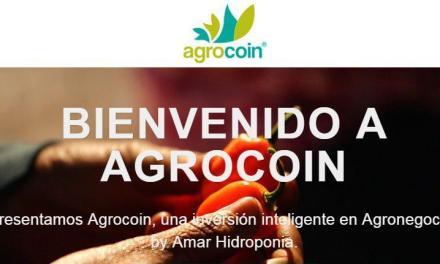 Las dos caras de Agrocoin, un modelo de inversión mexicano basado en el chile habanero