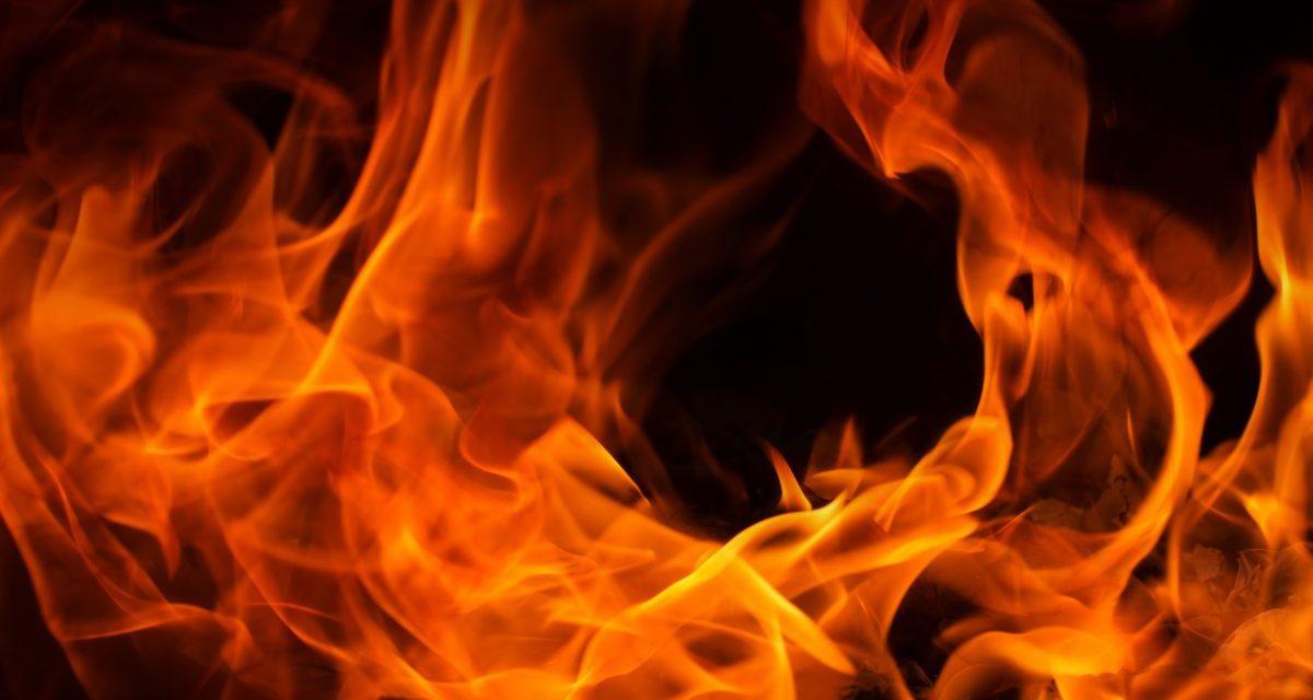 Antpool quema 12% de las comisiones de Bitcoin Cash para generar rentabilidad a sus inversionistas