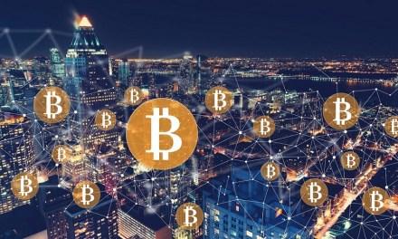 CEO de Twitter espera que bitcoin se convierta en la moneda nativa de Internet