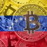 """CEO de Paxful: Venezuela tiene """"un inmenso potencial"""" para establecer un criptomercado"""