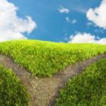 Bifurcaciones suaves y fuertes: conceptos, diferencias y algunos ejemplos