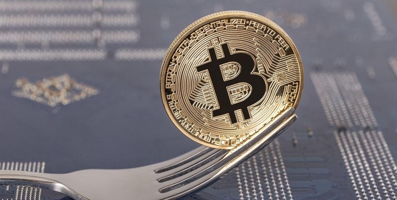 Más casas de cambio latinoamericanas confirman soporte exclusivo a Bitcoin ABC