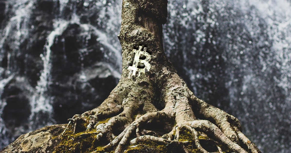 taproot-bitcoin