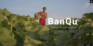 Empresa fabricante de la cerveza Budweiser aumenta su inversión en plataforma blockchain que ayuda a pequeños agricultores en el mundo