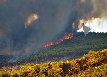 Μεγάλη φωτιά στη Χίο 29