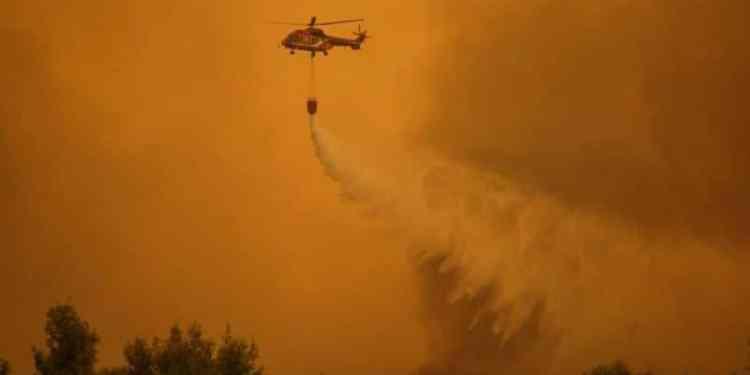 Forest fire at Evia island, on August 13, 2019 / Πυρκαγιά στην Εύβοια, στις 13 Αυγούστου, 2019