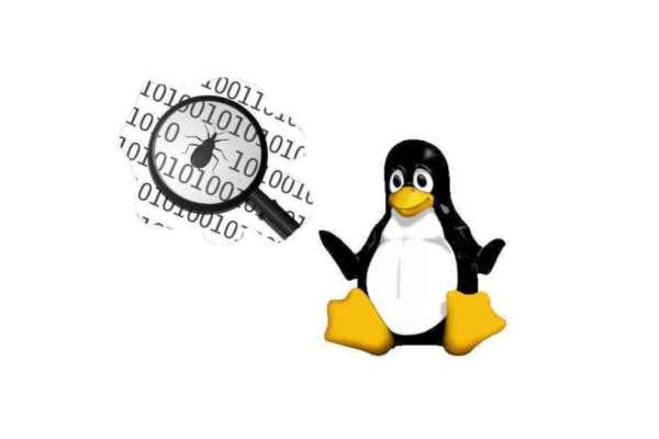 Problemele pe care le am cu Linux