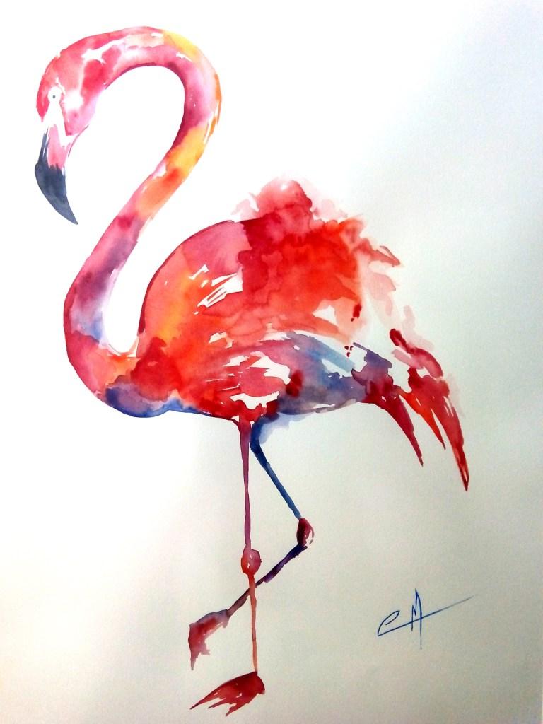 flamenco-lr