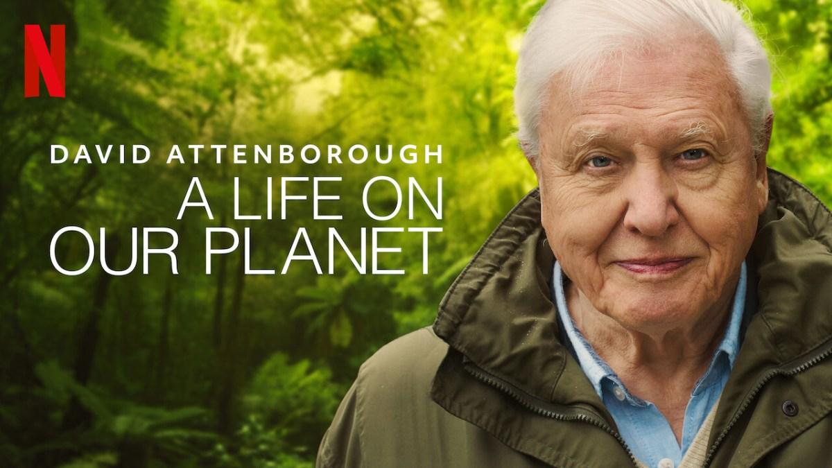 CRISP. Films : David Attenborough, A Life On Our Planet Review   CRISP.
