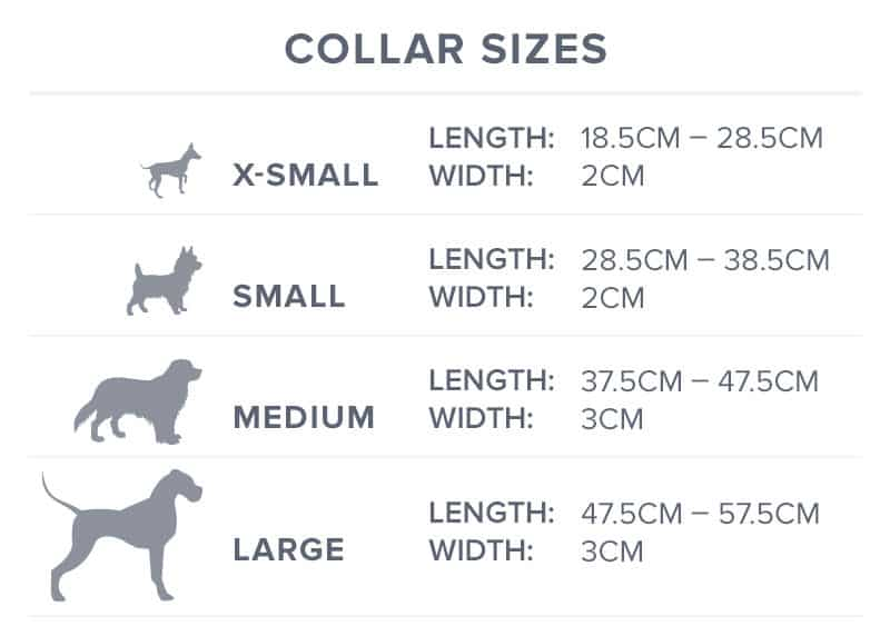 dog collar size guide