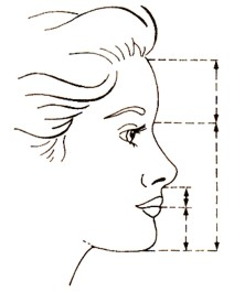 Cara con proporciones áureas