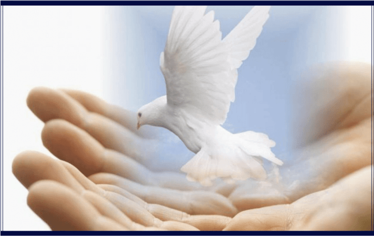 iubire bunavointa pace practica