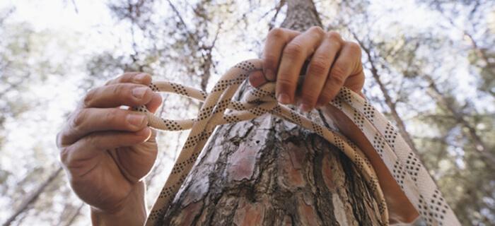 REFLEXIÓN: ¿Quién sostiene tu cuerda?