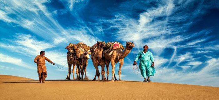 REFLEXIÓN: Palabras para el desierto