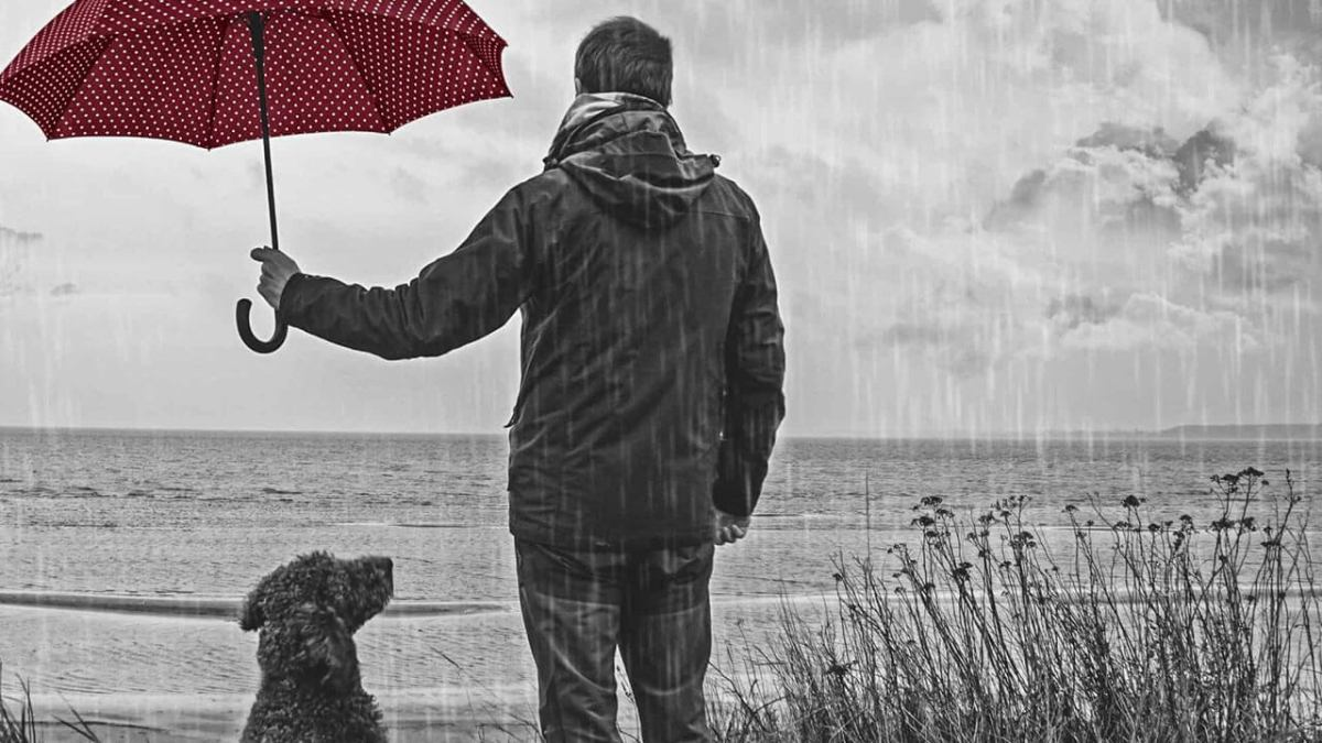 Reflexión: Los corazones solitarios entre nosotros