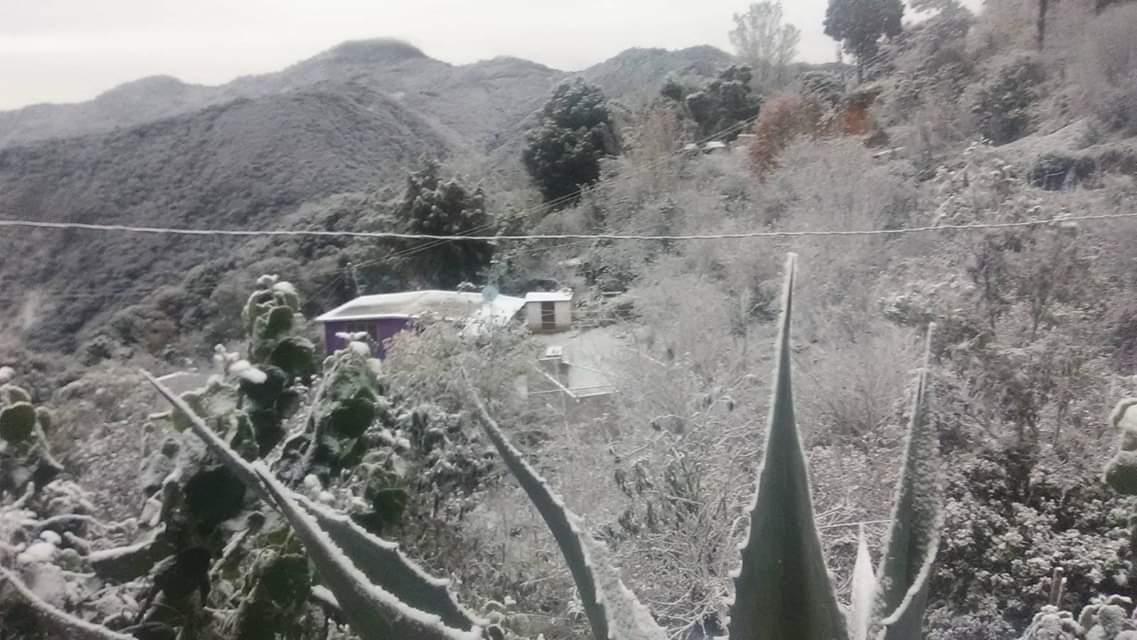 Reportan caída de aguanieve en zonas de Hidalgo