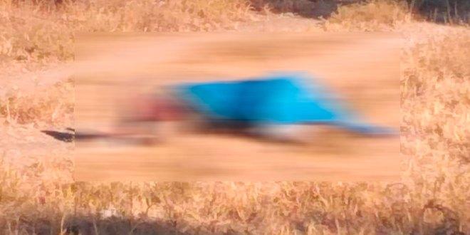 Fueron localizados los cadáveres de una pareja ejecutada