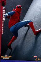 Hot Toys Spidey (13)