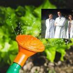 Pesticida naturale scoperto a Sassari fa il giro del mondo